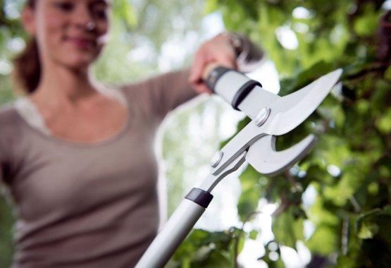 Отличный инструмент для подрезки ветвей